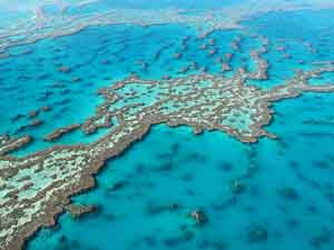 Great Barrier Reef Tourist Place 1