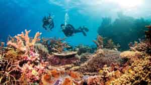 Great Barrier Reef Tourist Place 2