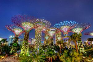 Supertree Grove Singapore Night Show