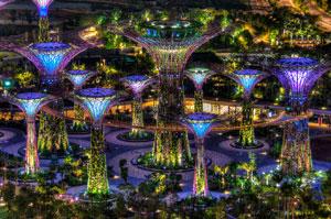 Supertree Grove Singapore Night View