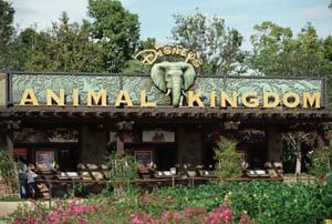 Walt Disney World Animal Kingdom Theme Park